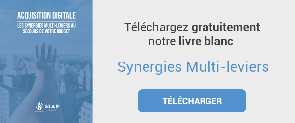 CTA-Livre-blanc-synergies-multi-leviers